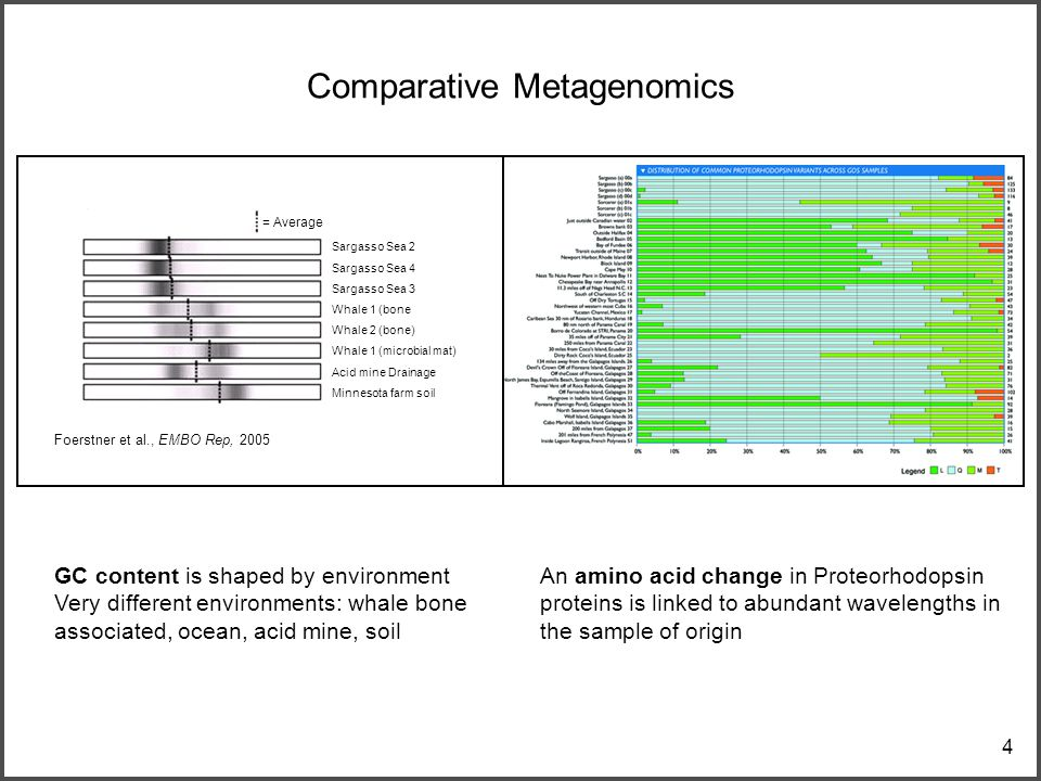 4 Comparative Metagenomics Foerstner et al., EMBO Rep, 2005 An amino acid change in Proteorhodopsin proteins is linked to abundant wavelengths in the sample of origin GC content is shaped by environment Very different environments: whale bone associated, ocean, acid mine, soil Sargasso Sea 2 Sargasso Sea 4 Sargasso Sea 3 Whale 1 (bone Whale 2 (bone) Whale 1 (microbial mat) Acid mine Drainage Minnesota farm soil = Average