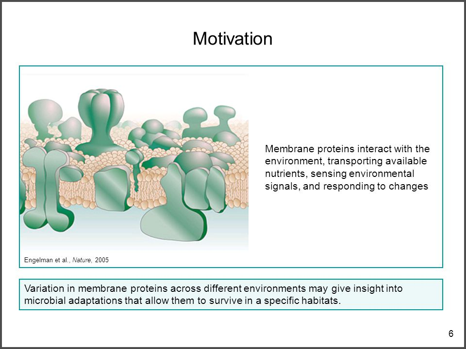 6 Motivation Variation in membrane proteins across different environments may give insight into microbial adaptations that allow them to survive in a specific habitats.
