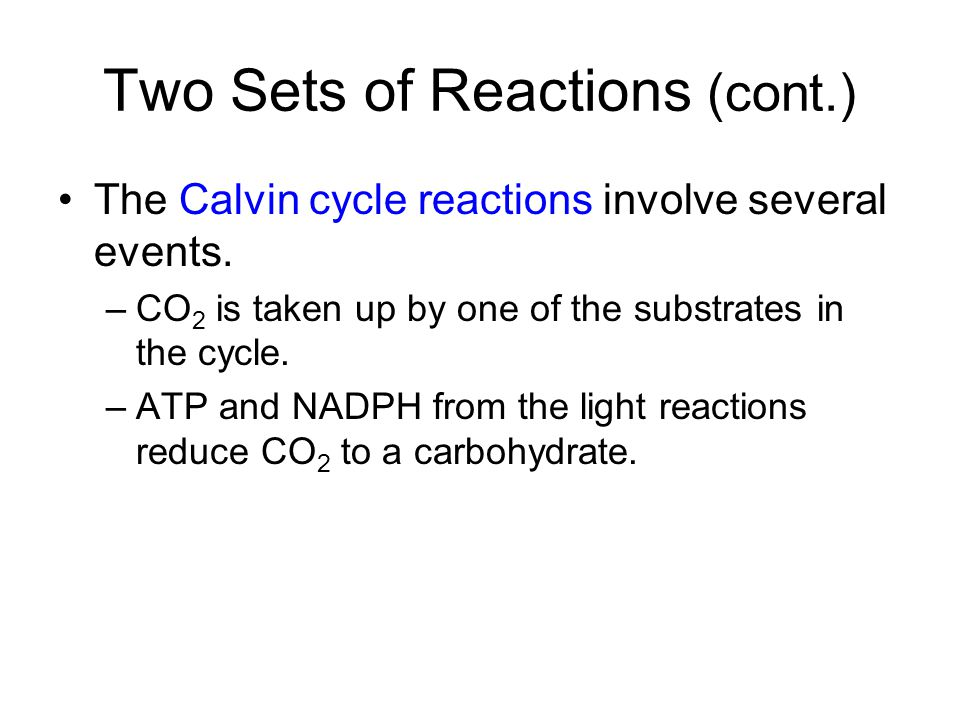 Two Sets of Reactions (cont.) The Calvin cycle reactions involve several events. –CO 2 is taken up by one of the substrates in the cycle. –ATP and NAD