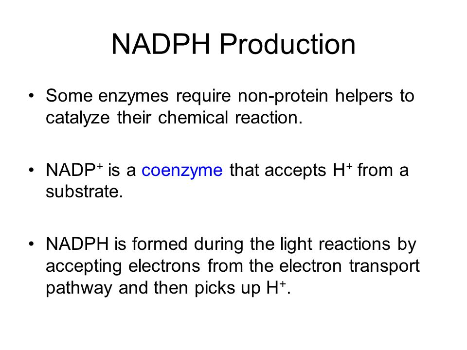 NADPH Production Some enzymes require non-protein helpers to catalyze their chemical reaction. NADP + is a coenzyme that accepts H + from a substrate.