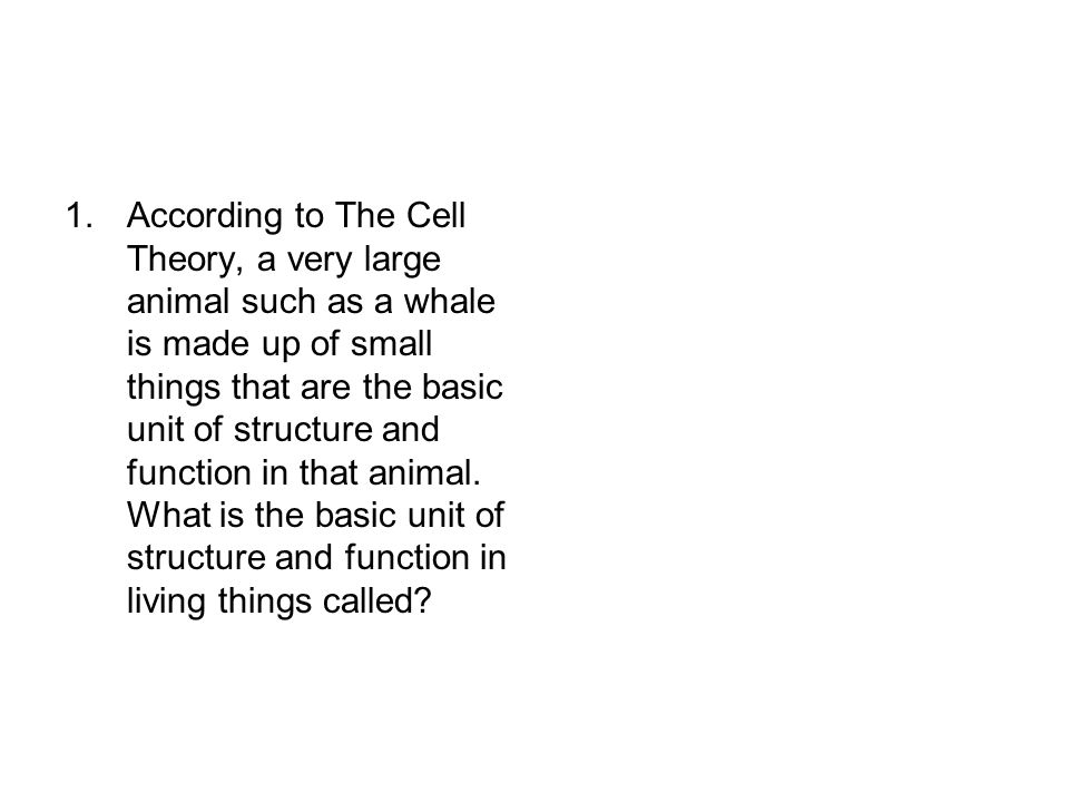 1.According to The Cell Theory, a very large animal such as a whale is made up of small things that are the basic unit of structure and function in th