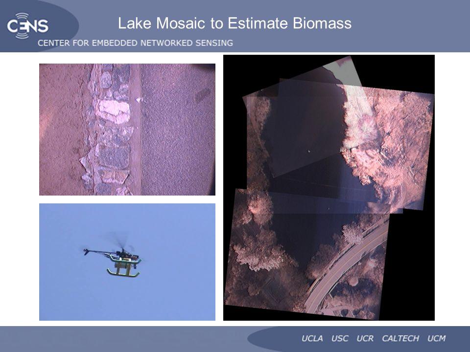 Lake Mosaic to Estimate Biomass