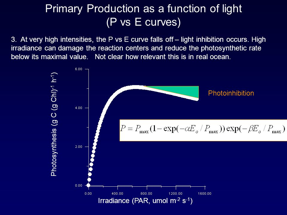 Primary Production as a function of light (P vs E curves) 3. At very high intensities, the P vs E curve falls off – light inhibition occurs. High irra