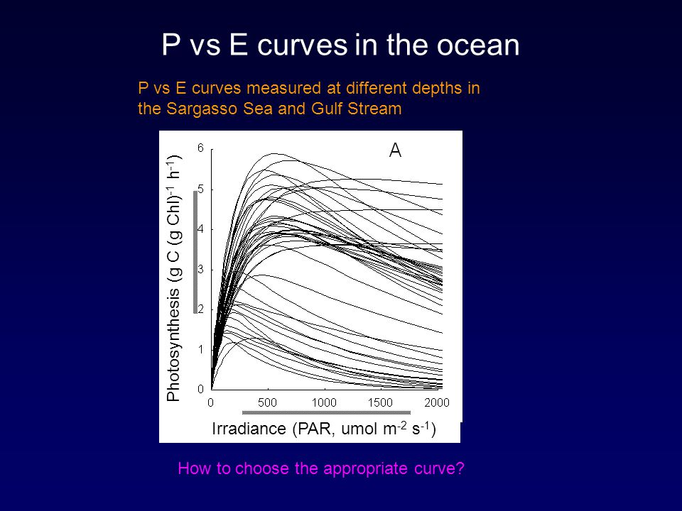 P vs E curves in the ocean How to choose the appropriate curve? P vs E curves measured at different depths in the Sargasso Sea and Gulf Stream Irradia