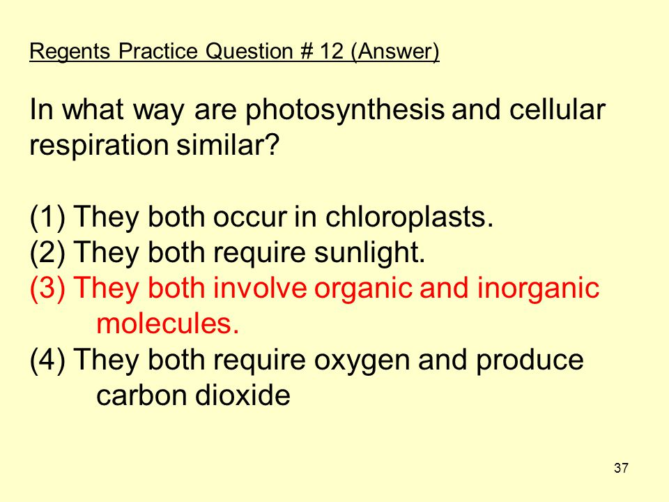 37 Regents Practice Question # 12 (Answer) In what way are photosynthesis and cellular respiration similar.