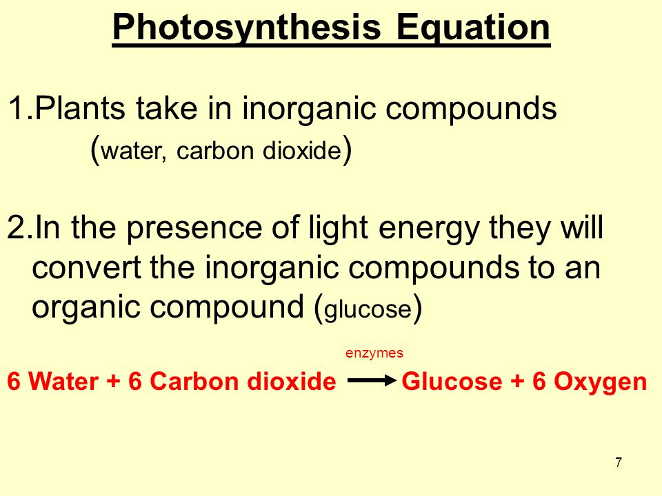 7 Photosynthesis Equation 1.Plants take in inorganic compounds ( water, carbon dioxide ) 2.In the presence of light energy they will convert the inorganic compounds to an organic compound ( glucose ) enzymes 6 Water + 6 Carbon dioxide Glucose + 6 Oxygen