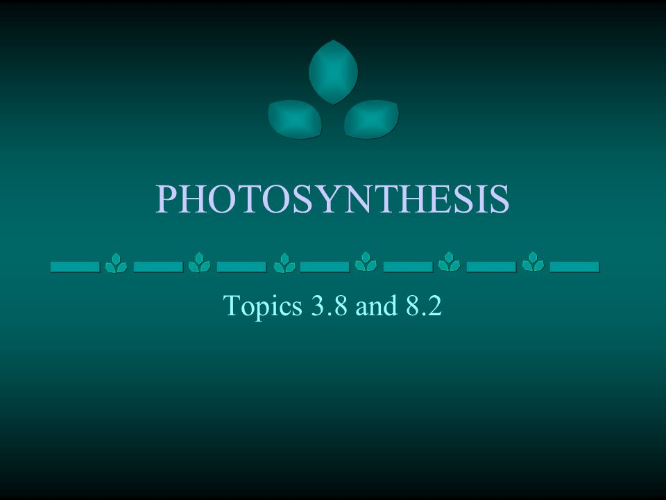 PHOTOSYNTHESIS Topics 3.8 and 8.2