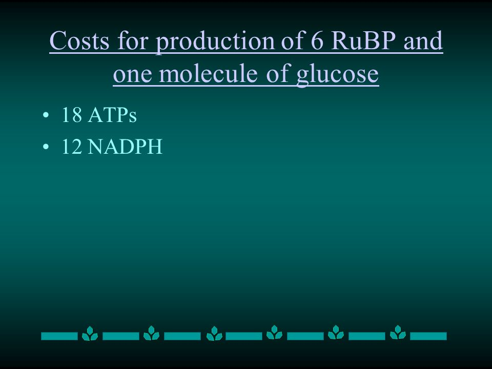 Costs for production of 6 RuBP and one molecule of glucose 18 ATPs 12 NADPH