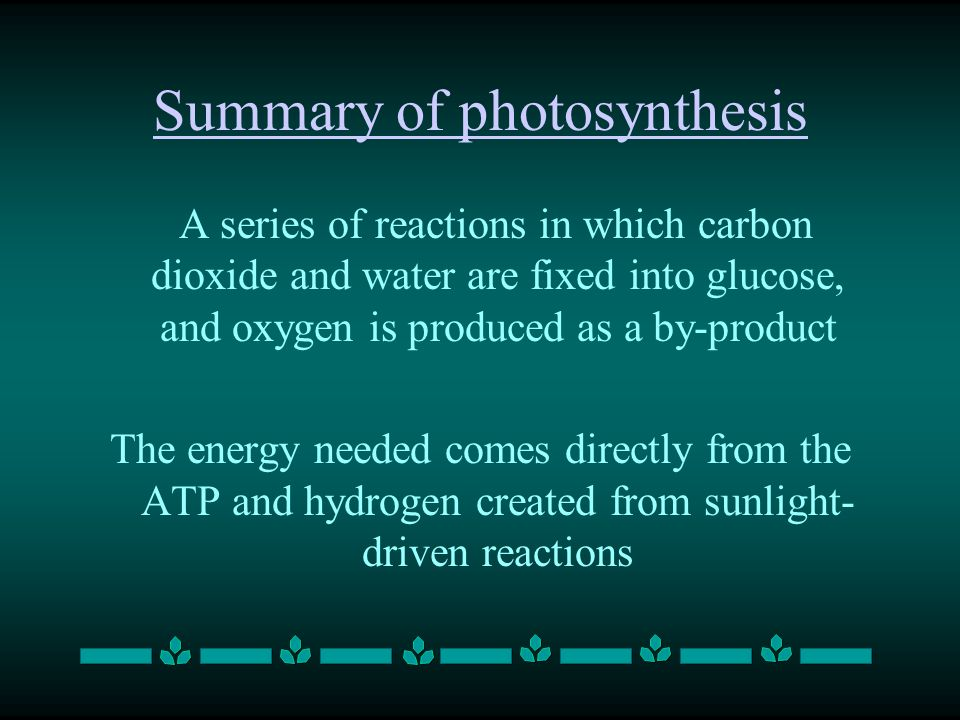 Summary of photosynthesis A series of reactions in which carbon dioxide and water are fixed into glucose, and oxygen is produced as a by-product The energy needed comes directly from the ATP and hydrogen created from sunlight- driven reactions