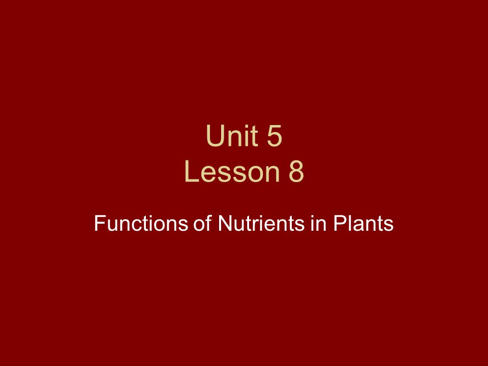 Unit 5 Lesson 8 Functions of Nutrients in Plants