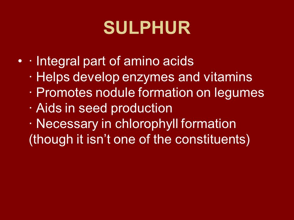 SULPHUR · Integral part of amino acids · Helps develop enzymes and vitamins · Promotes nodule formation on legumes · Aids in seed production · Necessary in chlorophyll formation (though it isn't one of the constituents)