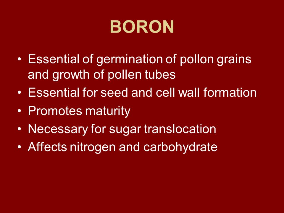BORON Essential of germination of pollon grains and growth of pollen tubes Essential for seed and cell wall formation Promotes maturity Necessary for sugar translocation Affects nitrogen and carbohydrate