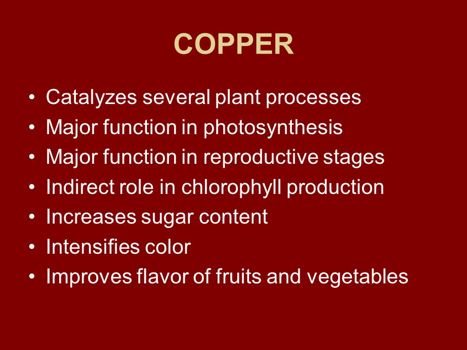 COPPER Catalyzes several plant processes Major function in photosynthesis Major function in reproductive stages Indirect role in chlorophyll production Increases sugar content Intensifies color Improves flavor of fruits and vegetables