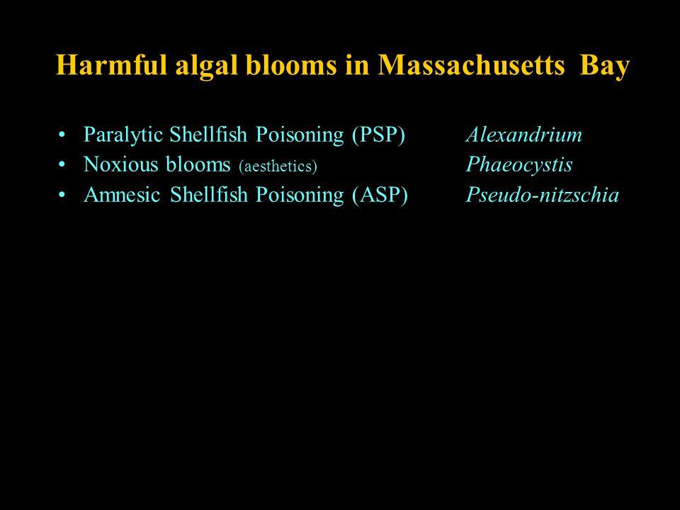 Harmful algal blooms in Massachusetts Bay Paralytic Shellfish Poisoning (PSP)Alexandrium Noxious blooms (aesthetics) Phaeocystis Amnesic Shellfish Poi
