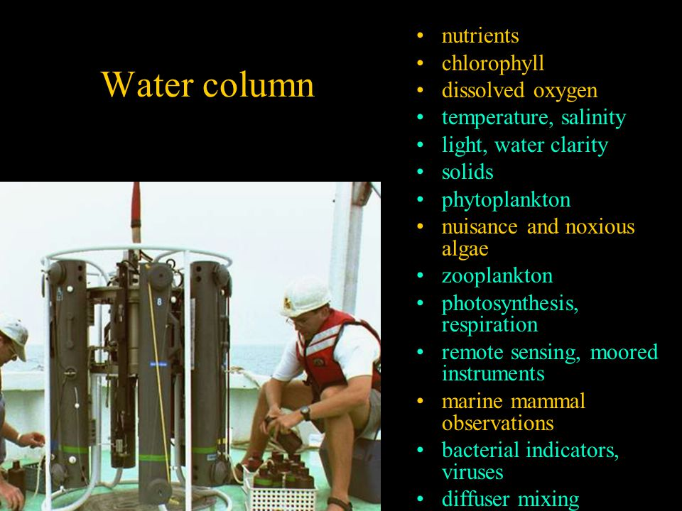 Water column nutrients chlorophyll dissolved oxygen temperature, salinity light, water clarity solids phytoplankton nuisance and noxious algae zooplankton photosynthesis, respiration remote sensing, moored instruments marine mammal observations bacterial indicators, viruses diffuser mixing