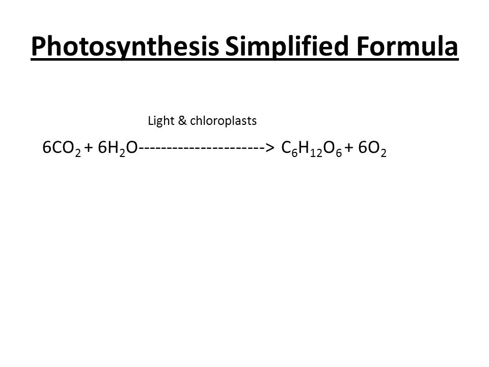 Photosynthesis Simplified Formula Light & chloroplasts 6CO 2 + 6H 2 O----------------------> C 6 H 12 O 6 + 6O 2