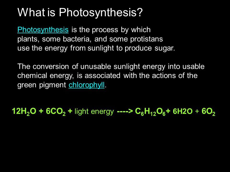 What is Photosynthesis? PhotosynthesisPhotosynthesis is the process by which plants, some bacteria, and some protistans use the energy from sunlight t