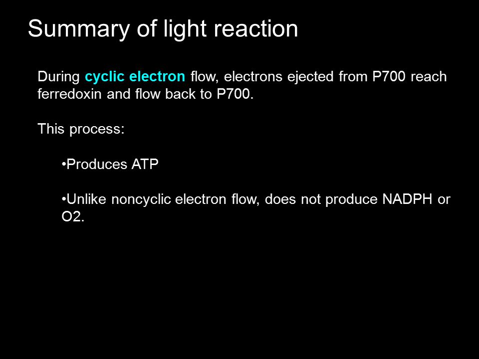Summary of light reaction During cyclic electron flow, electrons ejected from P700 reach ferredoxin and flow back to P700. This process: Produces ATP