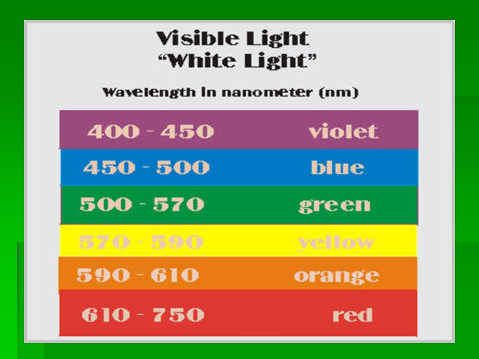 Chlorophyll a + Chlorophyll b + carotenoids -Chlorophyll a= only pigment that works directly and green in color -Chlorophyll b=blue-green -Cartenoids= yellow-orange…these have the ability to dissipate excessive light energy that would otherwise damage chlorophyll