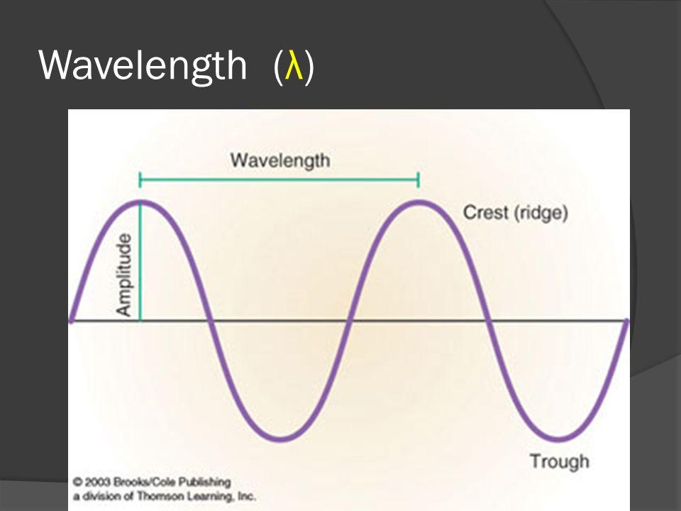 Wavelength (λ)