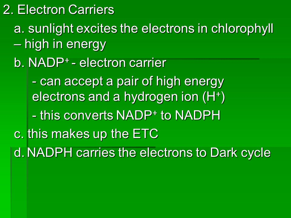 2. Electron Carriers a. sunlight excites the electrons in chlorophyll – high in energy b. NADP + - electron carrier - can accept a pair of high energy