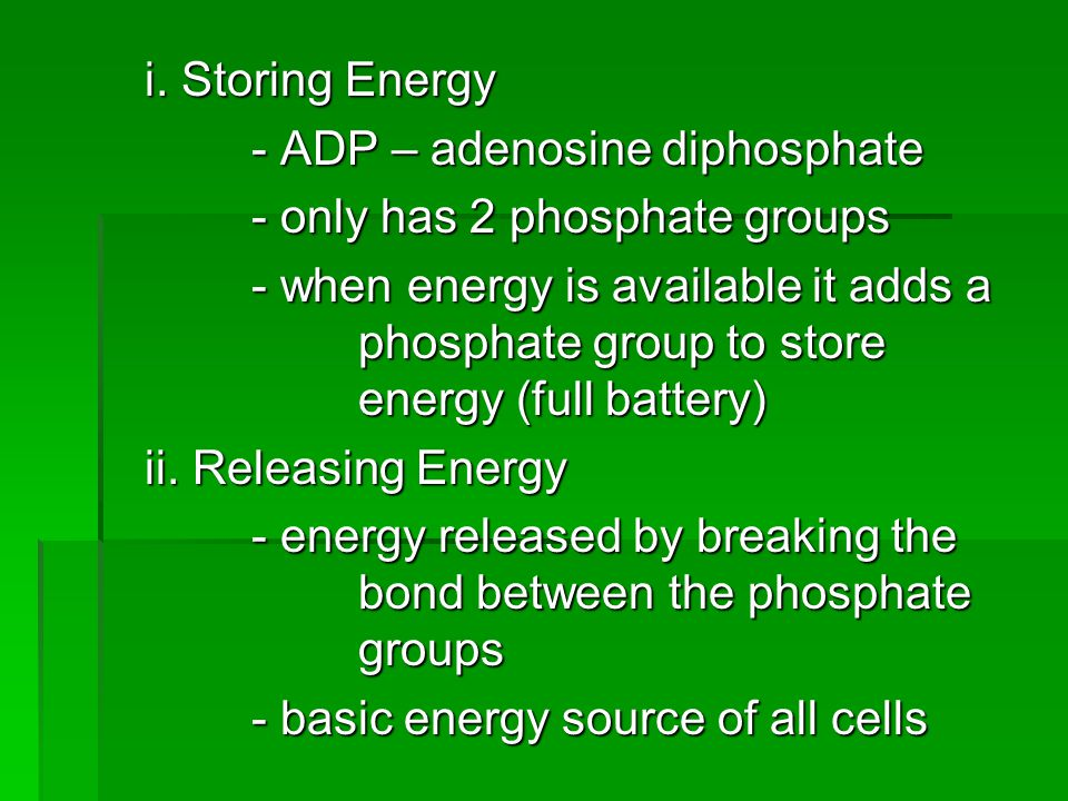 i. Storing Energy - ADP – adenosine diphosphate - only has 2 phosphate groups - when energy is available it adds a phosphate group to store energy (fu