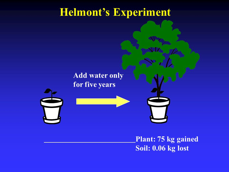 Add water only for five years Plant: 75 kg gained Soil: 0.06 kg lost Helmont's Experiment