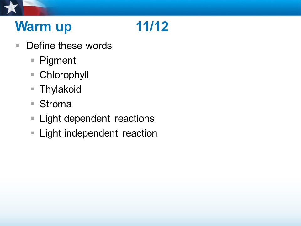 Warm up 11/12  Define these words  Pigment  Chlorophyll  Thylakoid  Stroma  Light dependent reactions  Light independent reaction