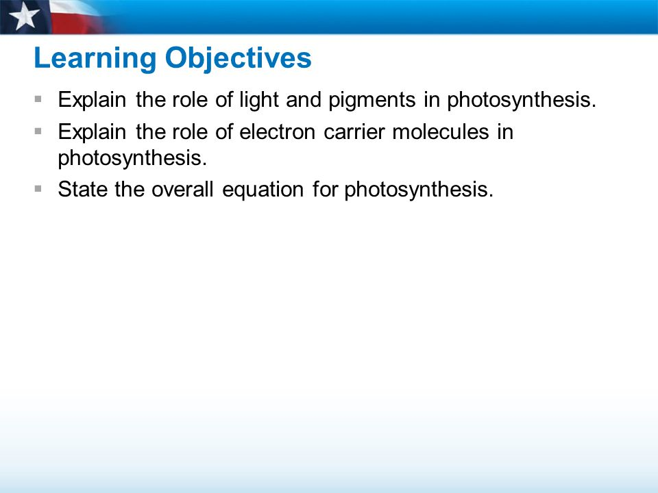 Light Light energy from the sun must be captured for photosynthesis to occur.