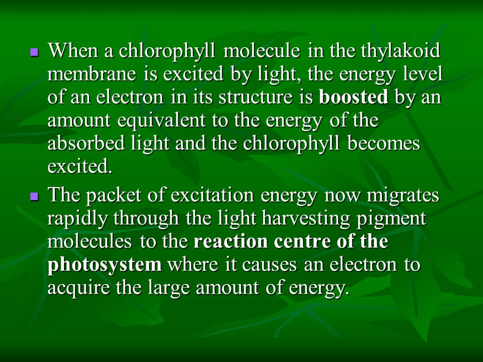 When a chlorophyll molecule in the thylakoid membrane is excited by light, the energy level of an electron in its structure is boosted by an amount eq
