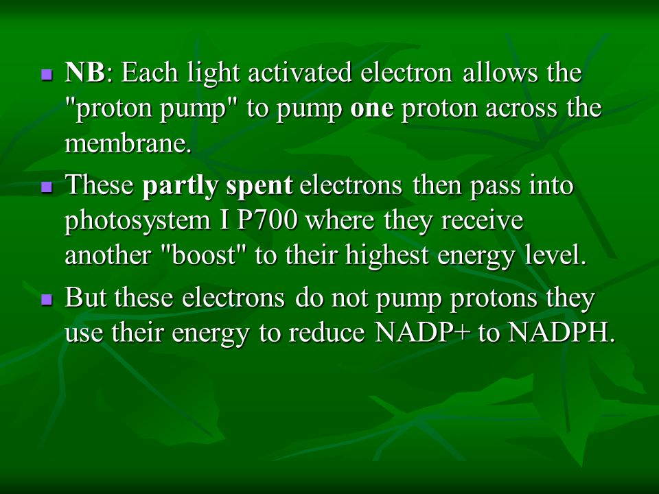NB: Each light activated electron allows the