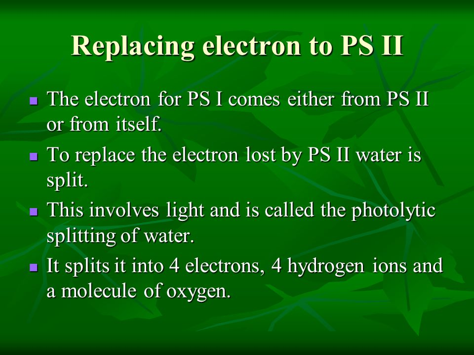 Replacing electron to PS II The electron for PS I comes either from PS II or from itself. The electron for PS I comes either from PS II or from itself