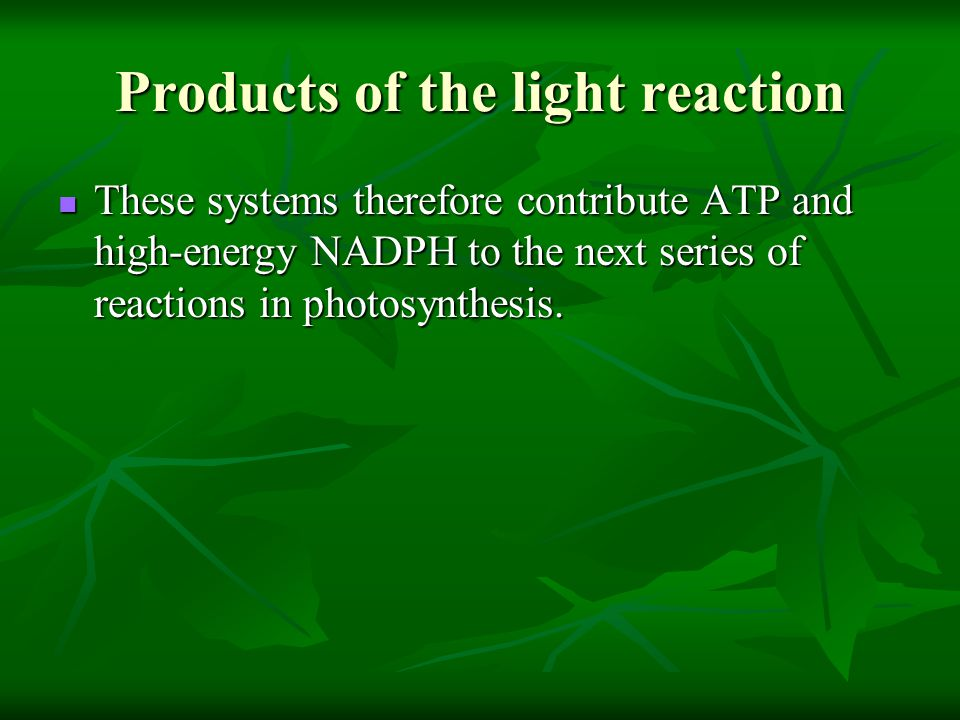 Products of the light reaction These systems therefore contribute ATP and high-energy NADPH to the next series of reactions in photosynthesis. These s
