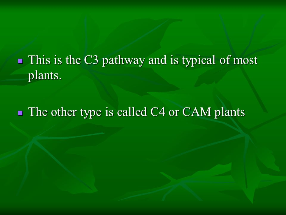 This is the C3 pathway and is typical of most plants. This is the C3 pathway and is typical of most plants. The other type is called C4 or CAM plants