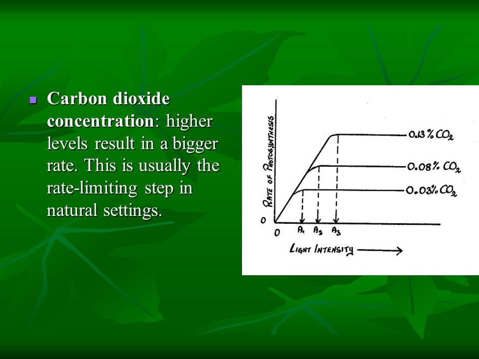 Carbon dioxide concentration: higher levels result in a bigger rate. This is usually the rate-limiting step in natural settings. Carbon dioxide concen