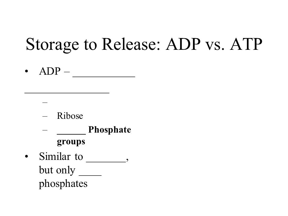 Storage to Release: ADP vs.