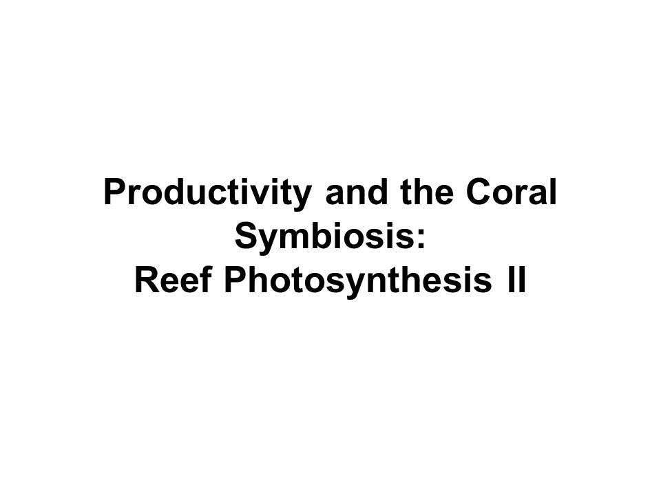 Productivity and the Coral Symbiosis: Reef Photosynthesis II