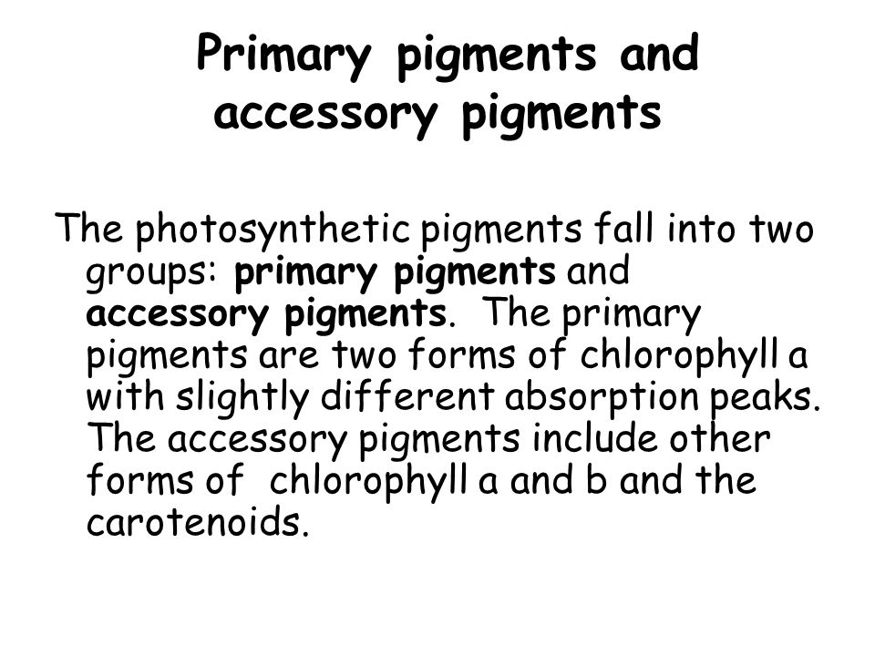 Accessory Pigments Accessory pigments help in absorbing wavelengths of light which otherwise could not be used by the plant, and passing on the energy from this light to chlorophyll.