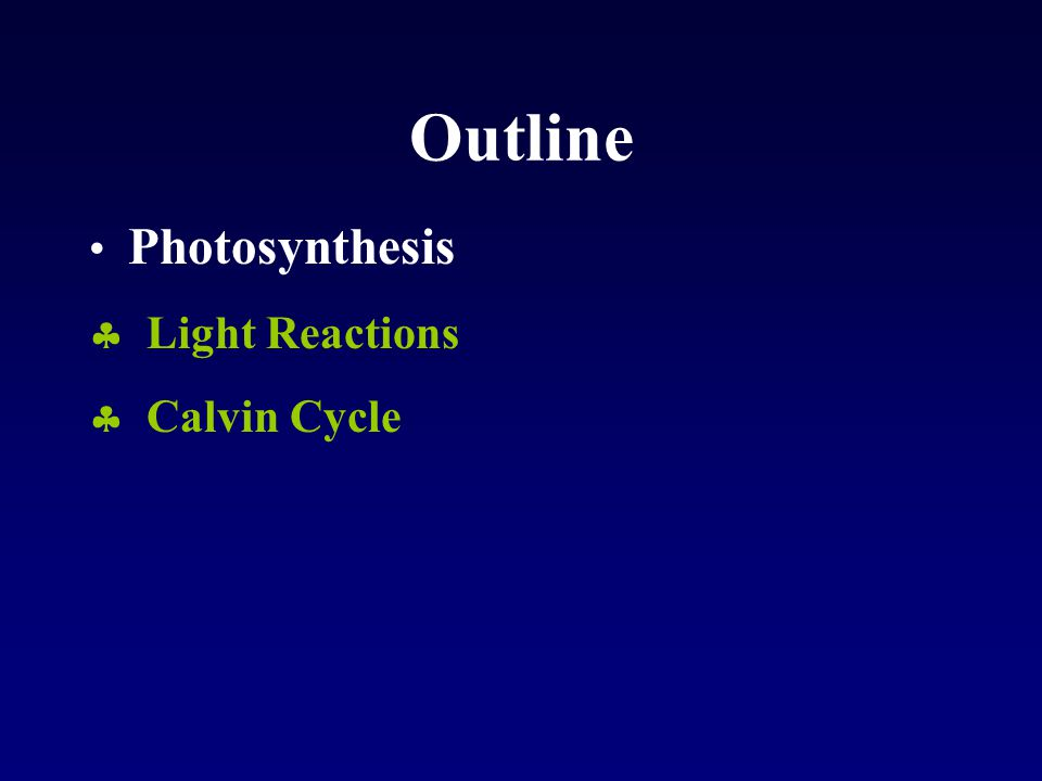 Outline Photosynthesis  Light Reactions  Calvin Cycle