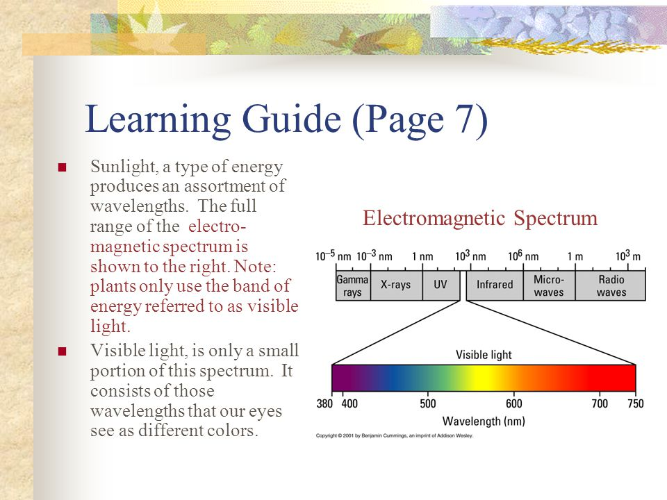 Learning Guide (Page 7) Sunlight, a type of energy produces an assortment of wavelengths. The full range of the electro- magnetic spectrum is shown to