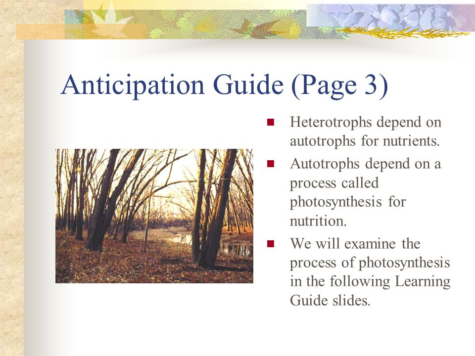 Anticipation Guide (Page 3) Heterotrophs depend on autotrophs for nutrients. Autotrophs depend on a process called photosynthesis for nutrition. We wi