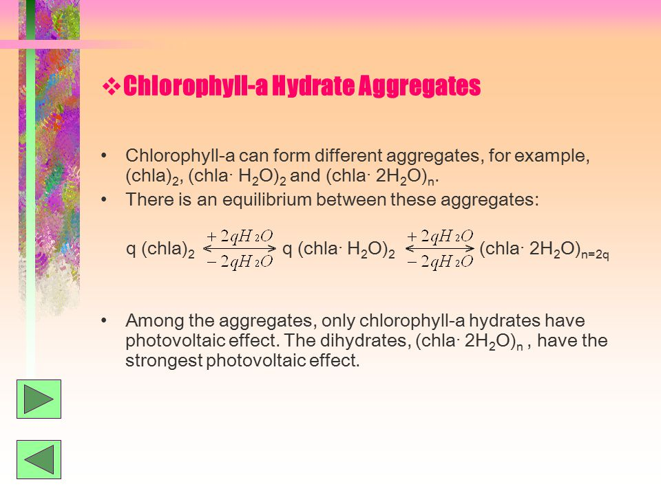  Chlorophyll-a Hydrate Aggregates Chlorophyll-a can form different aggregates, for example, (chla) 2, (chla· H 2 O) 2 and (chla· 2H 2 O) n.