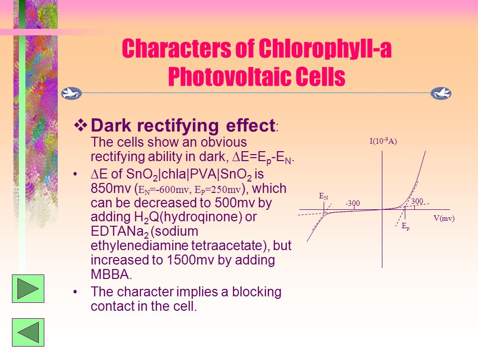 Characters of Chlorophyll-a Photovoltaic Cells  Dark rectifying effect : The cells show an obvious rectifying ability in dark, ∆E=E p -E N.
