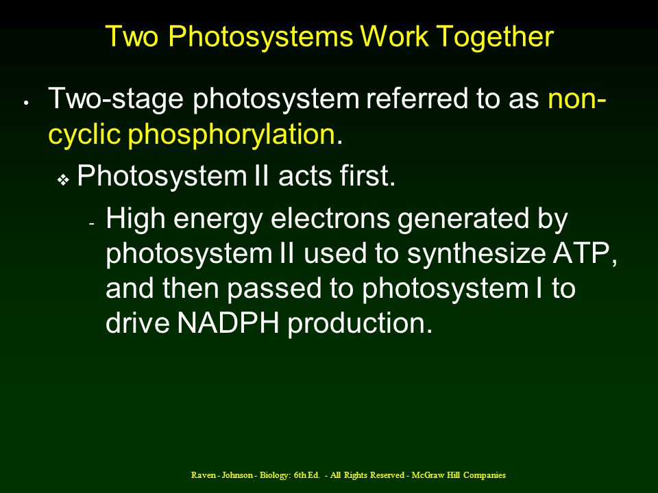 Raven - Johnson - Biology: 6th Ed. - All Rights Reserved - McGraw Hill Companies Two Photosystems Work Together Two-stage photosystem referred to as n