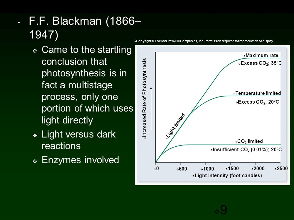 Organizing Pigments Into Photosystems Photosystem consists of two components:  Antenna Complex - Captures photons from sunlight.