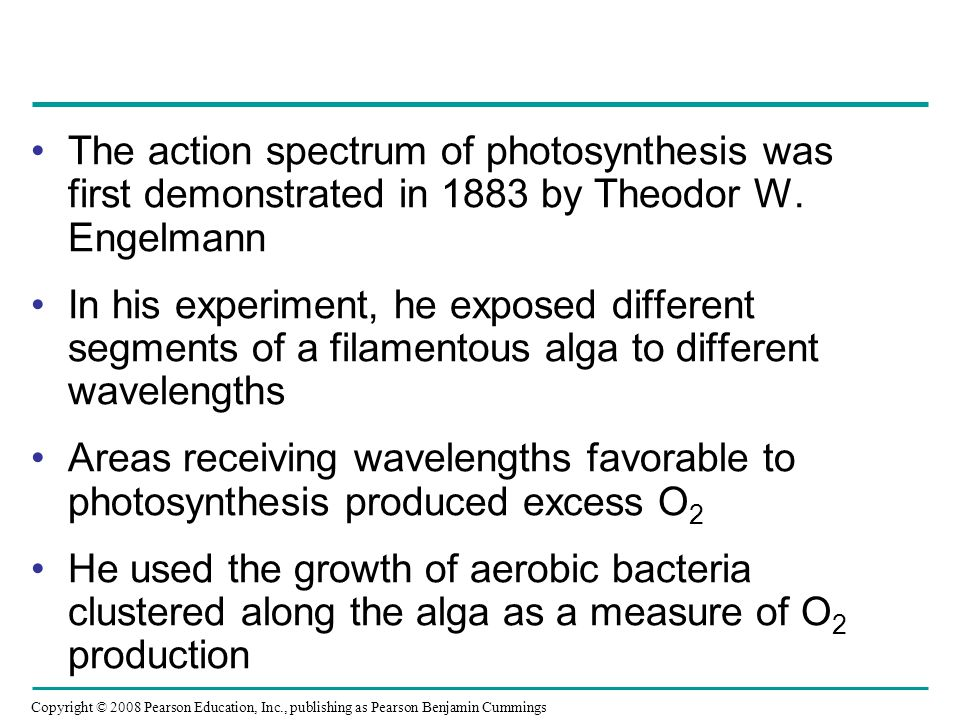 The action spectrum of photosynthesis was first demonstrated in 1883 by Theodor W. Engelmann In his experiment, he exposed different segments of a fil