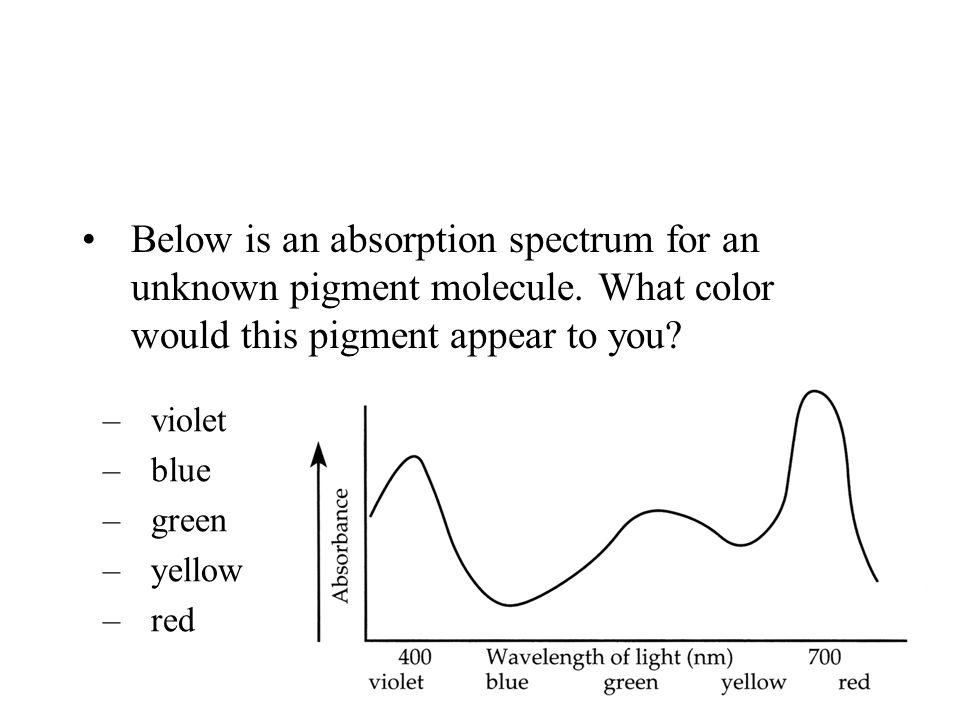 Below is an absorption spectrum for an unknown pigment molecule.
