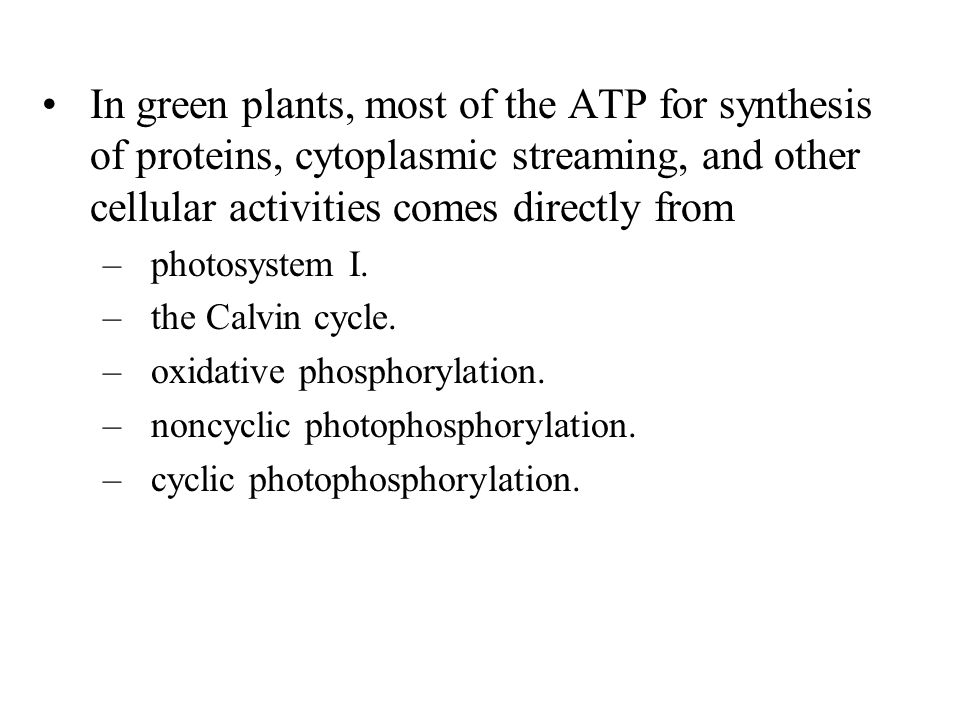 In green plants, most of the ATP for synthesis of proteins, cytoplasmic streaming, and other cellular activities comes directly from –photosystem I.