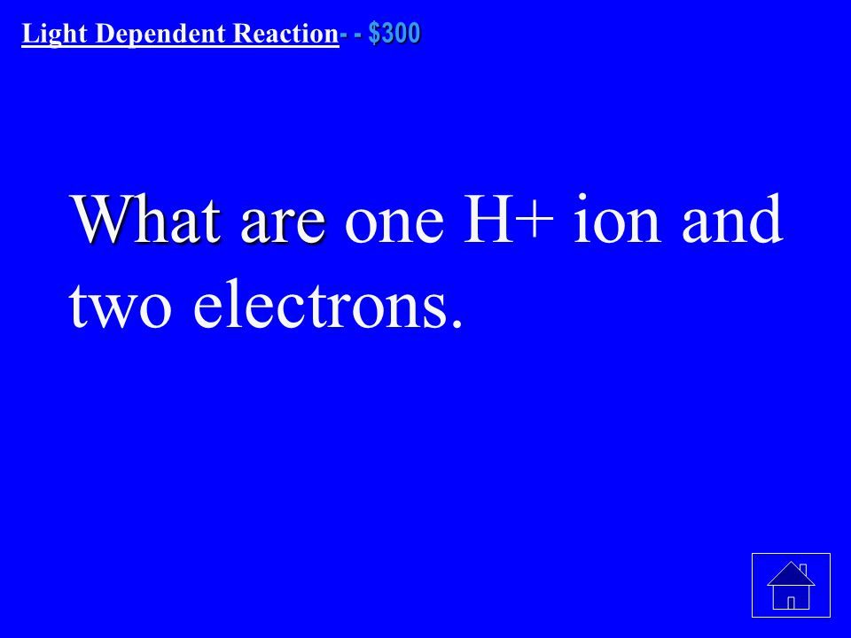 - - $200 Light Dependent Reaction - - $200 What are 6 H 2 0 molecules?