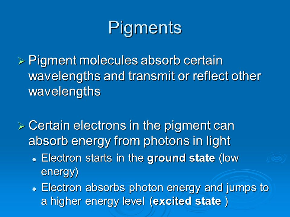 Pigments  Pigment molecules absorb certain wavelengths and transmit or reflect other wavelengths  Certain electrons in the pigment can absorb energy